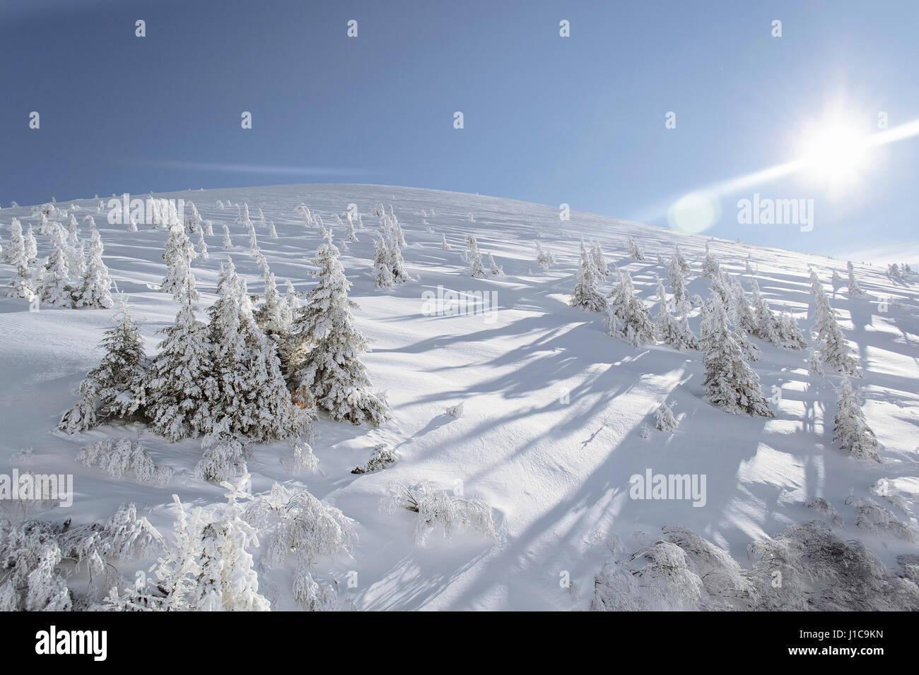 Snow on sunny mountain - Stock Image