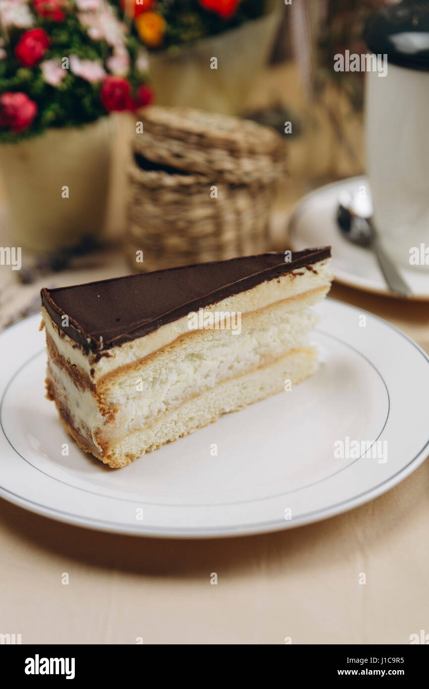 Slice of cake with chocolate icing on plate - Stock Image