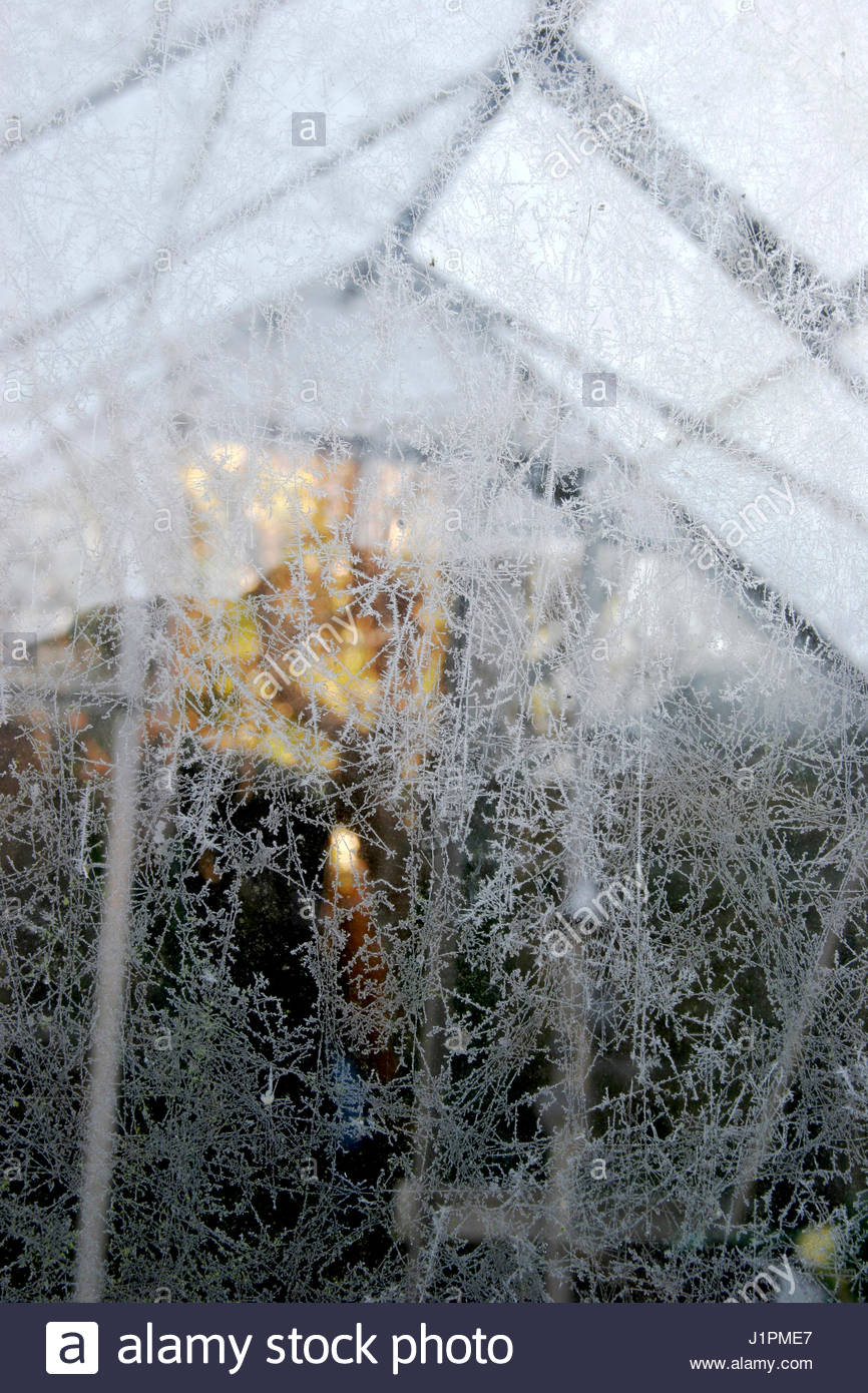 GREENHOUSE IN WINTER - Stock Image