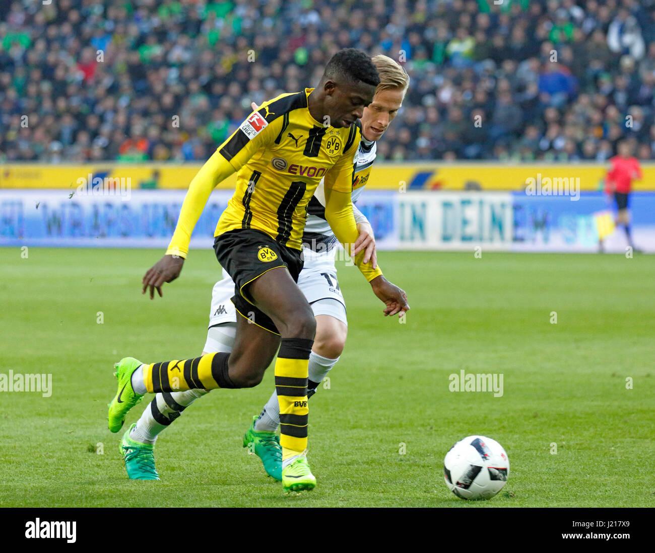 sporting bvb