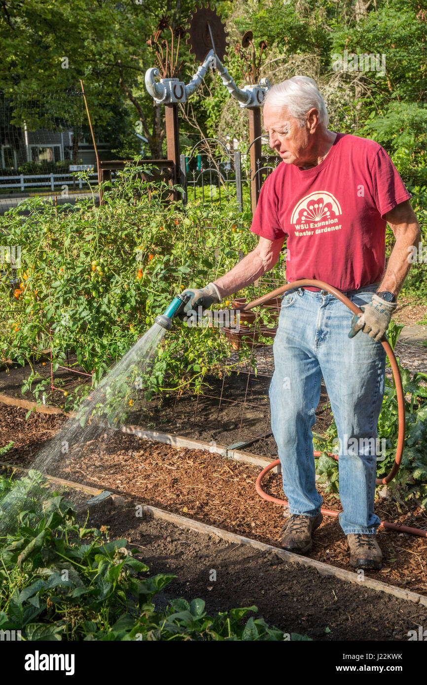 Watering A Community Garden Stock Photos & Watering A ...