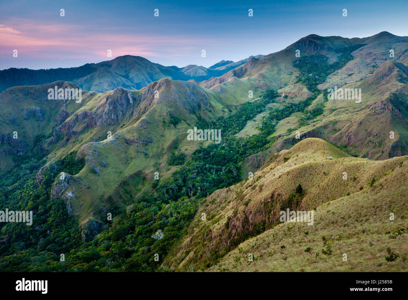 Dawn in Altos de Campana national park, Republic of  Panama. - Stock-Bilder
