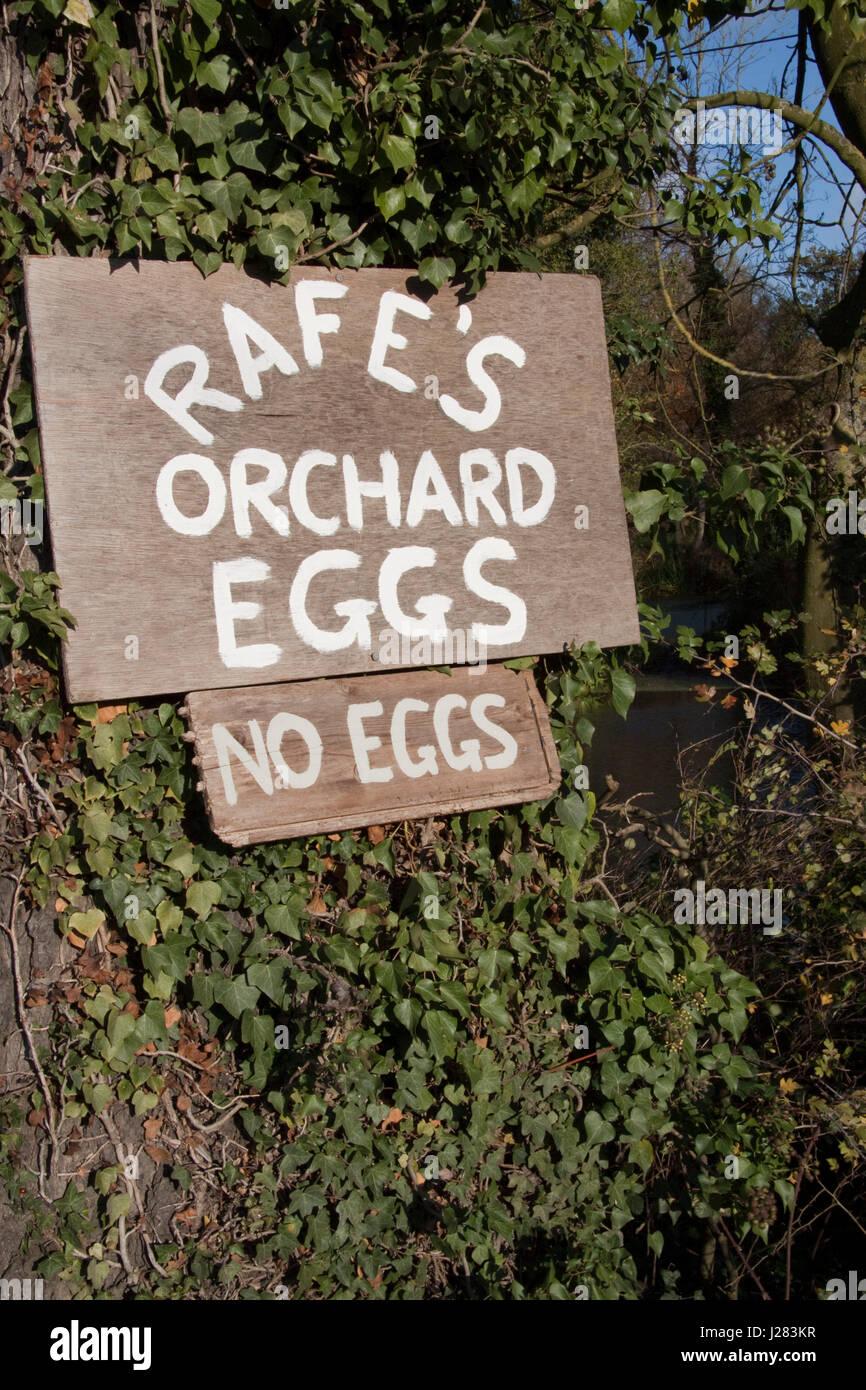 Handmade sign selling eggs - Stock Image