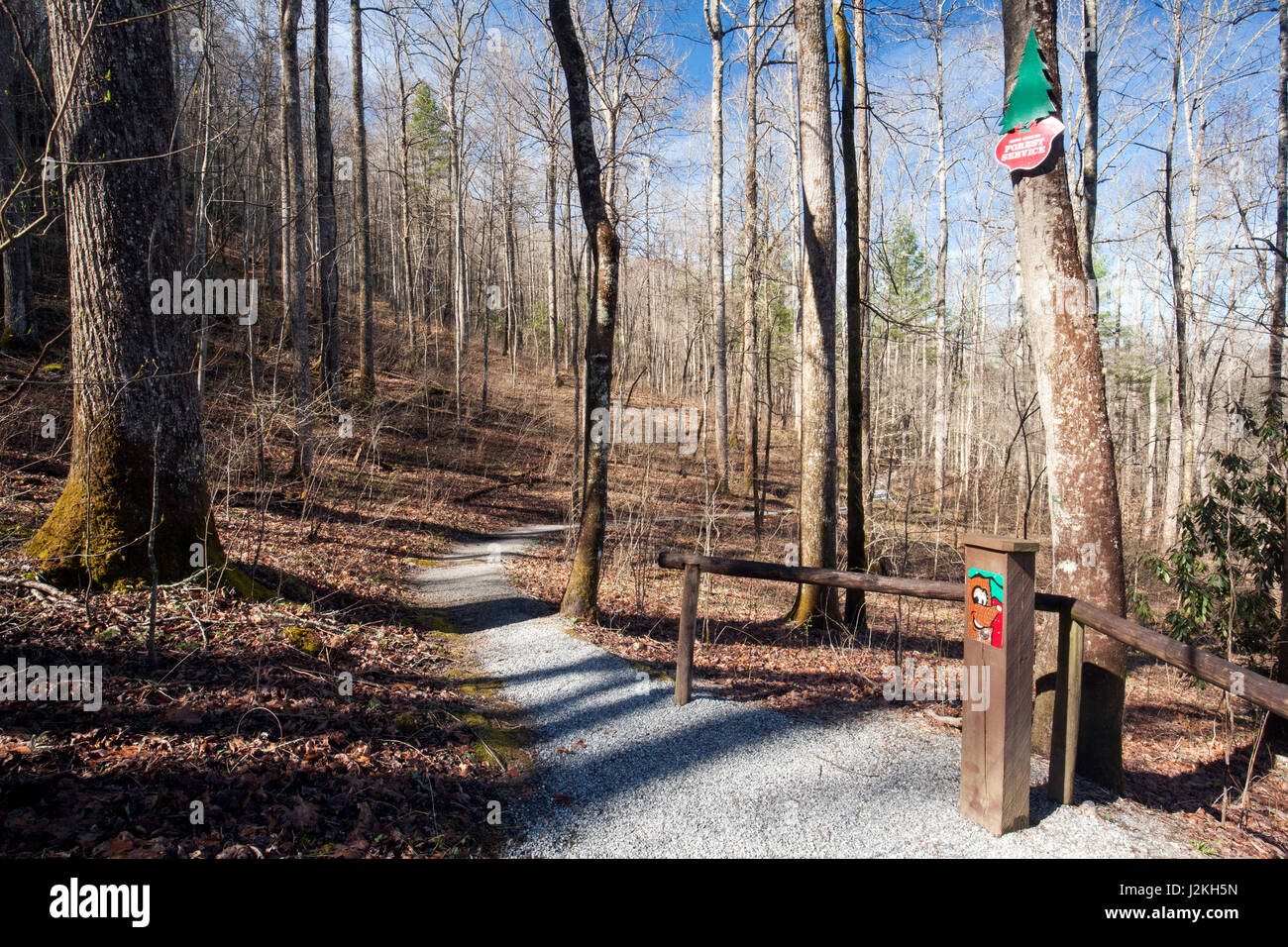 Trail at Holmes Educational State Forest - Hendersonville, North Carolina, USA - Stock Image