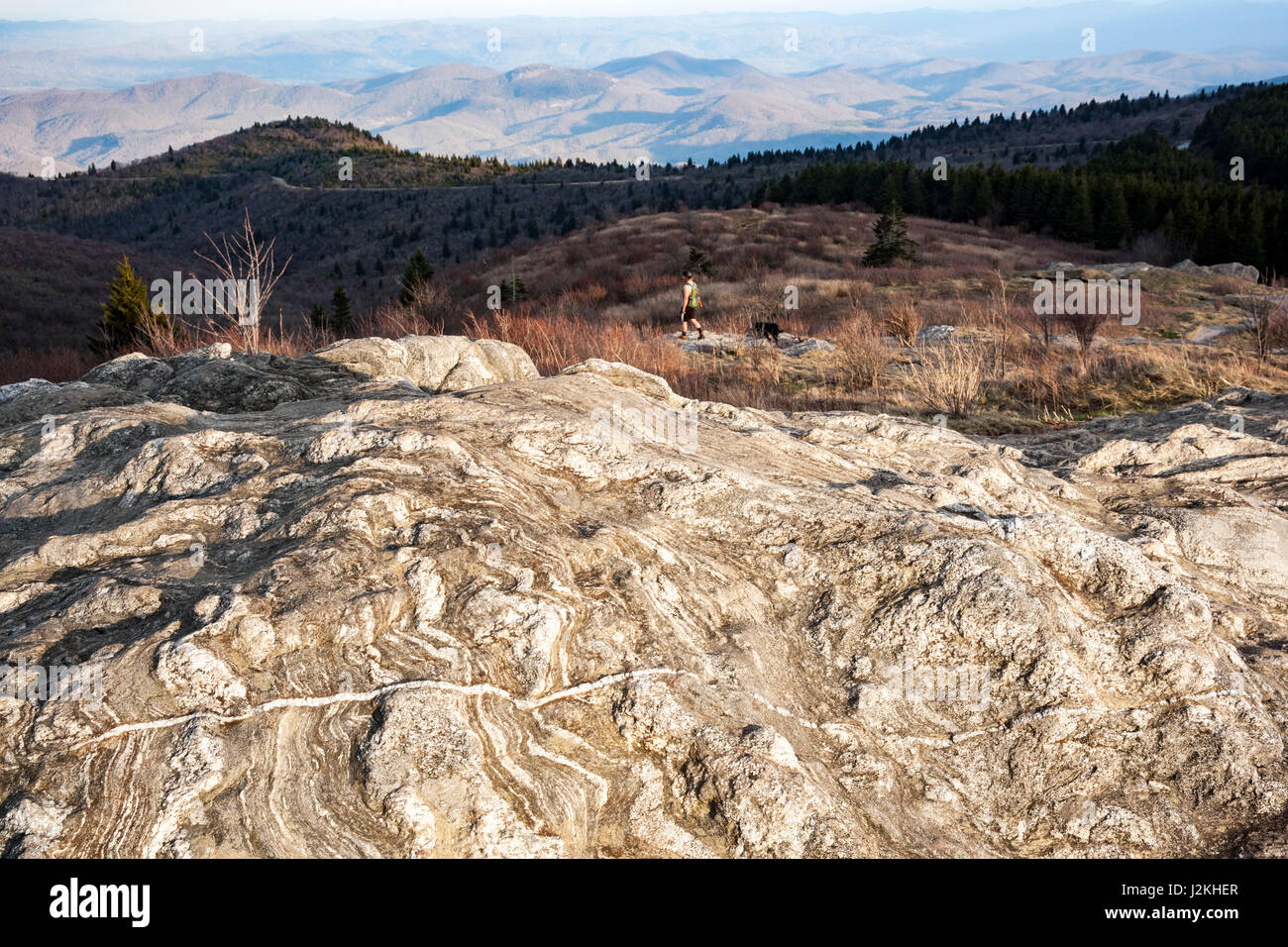 Rock patterns on Art Loeb Trail near Black Balsam Knob - Blue Ridge Parkway, North Carolina, USA - Stock Image