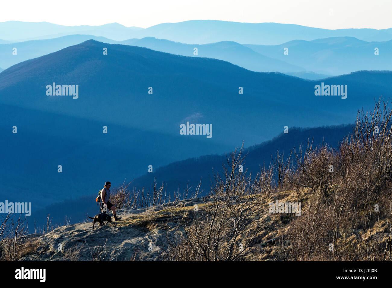 Hiker with dog on Art Loeb Trail near Black Balsam Knob - Blue Ridge Parkway, North Carolina, USA - Stock Image