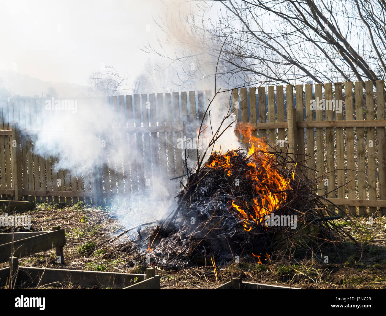 Allotment bonfire after clearing the overgrown land - Stock Image