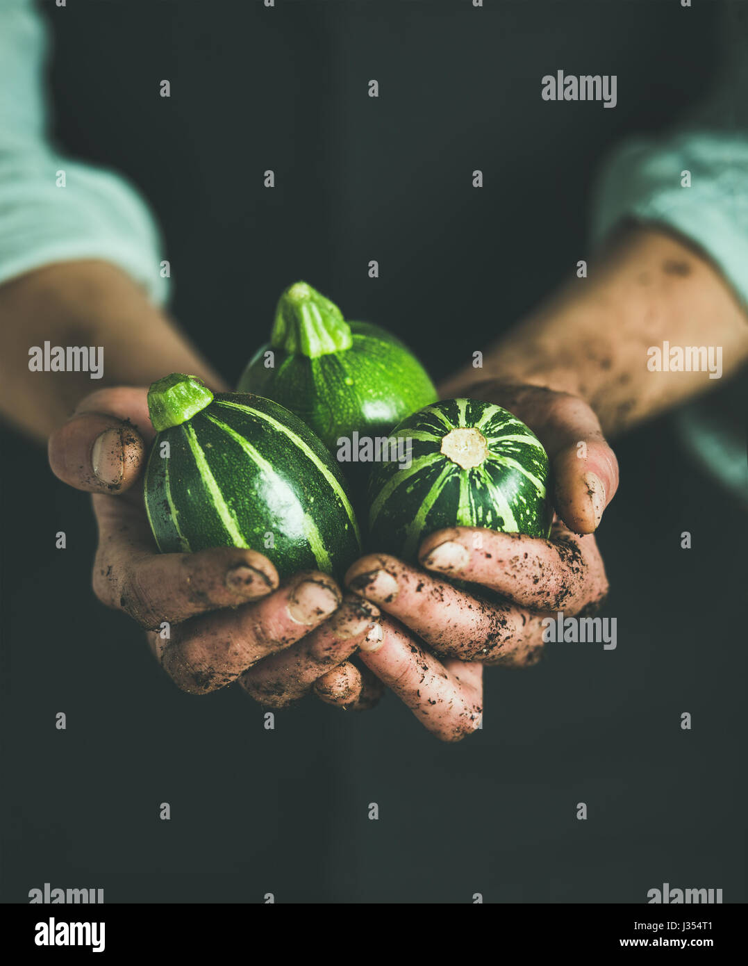 Man wearing black apron holding fresh green zucchinis in hands - Stock Image