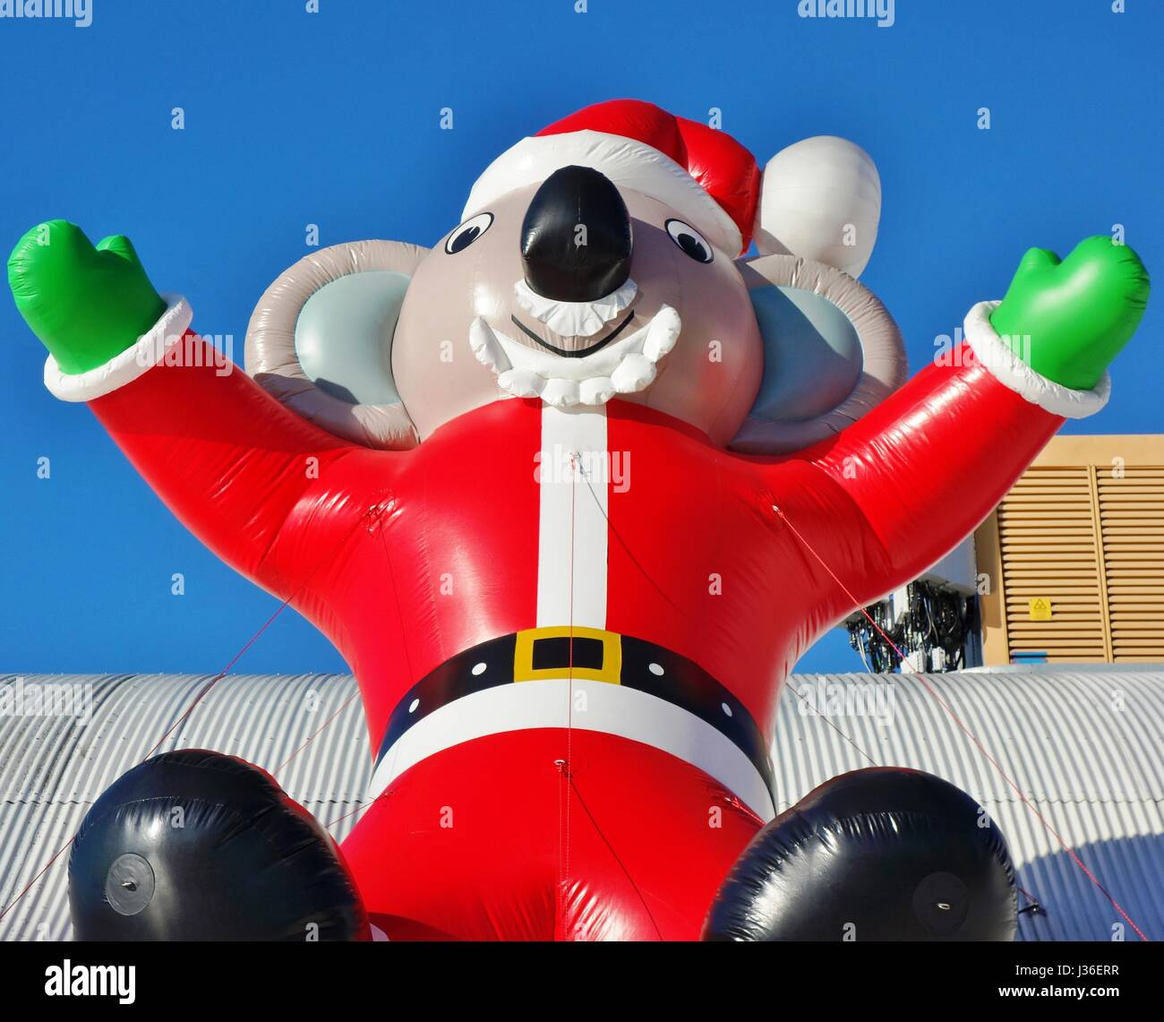 Australian Christmas Decorations Stock Photos & Australian
