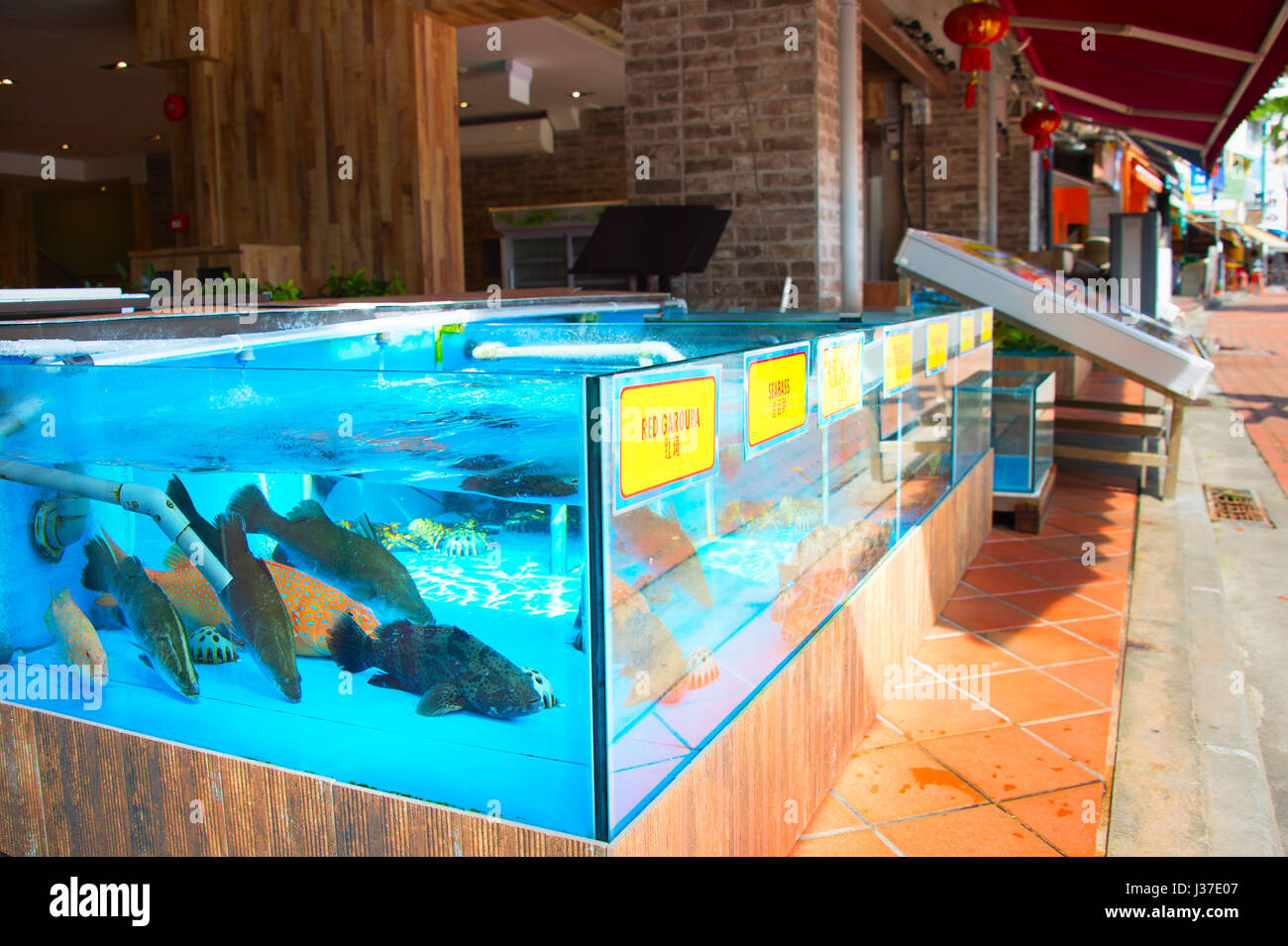 Singapore chinese restaurant stock photos singapore for Live fish tank