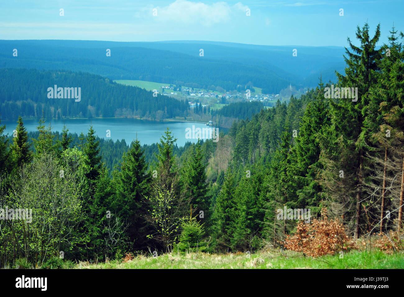 Rennsteig, Thüringer Wald, Deutschland - Stock-Bilder