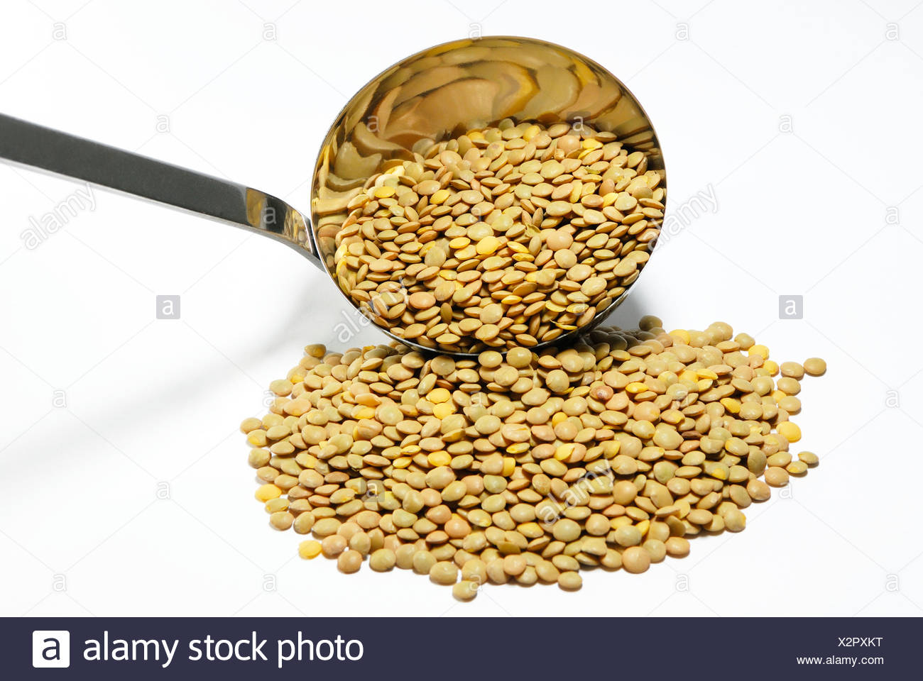 how to cook dried brown lentils