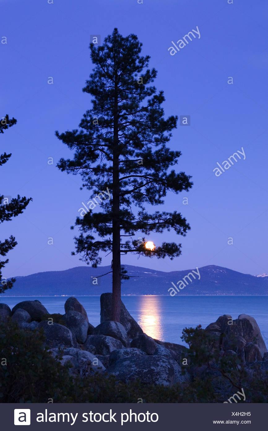 Landscape Photo Of Lake Tahoe Stock Photos & Landscape ...