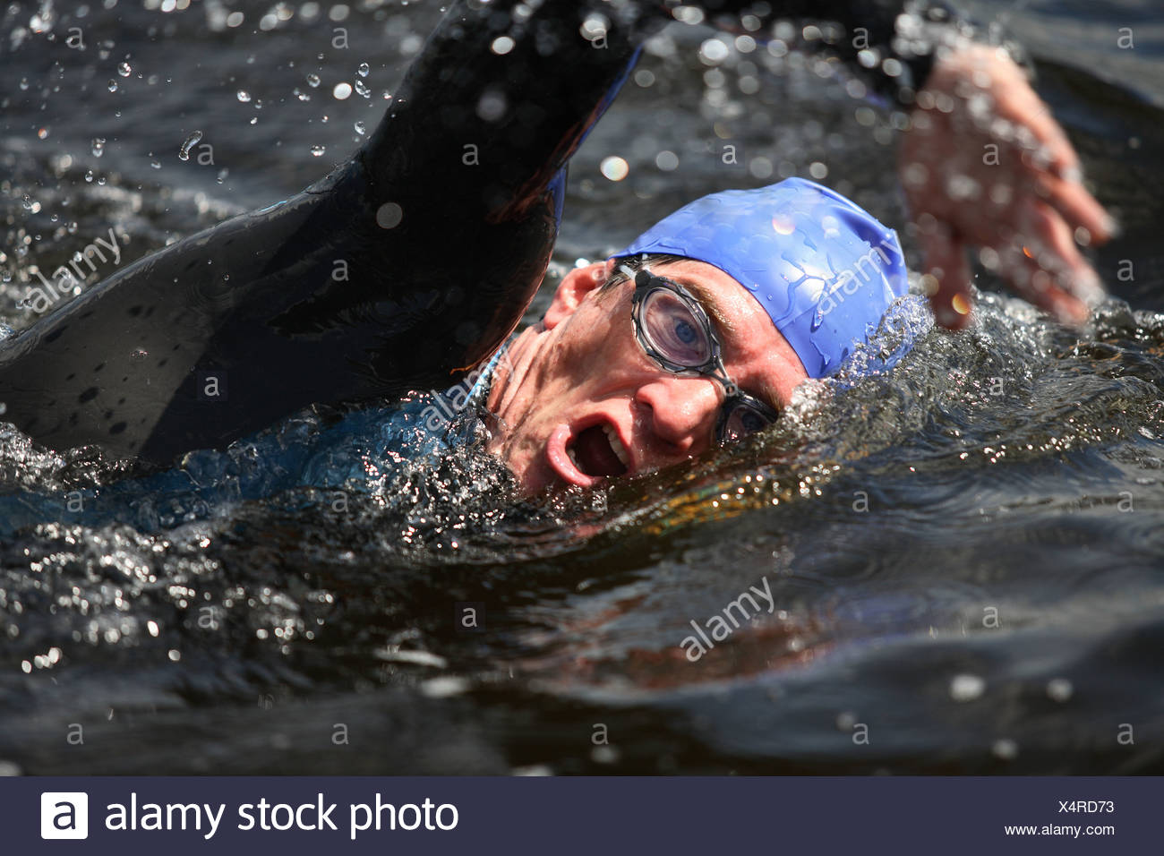 Triathlon Swimmer Stock Photos Amp Triathlon Swimmer Stock