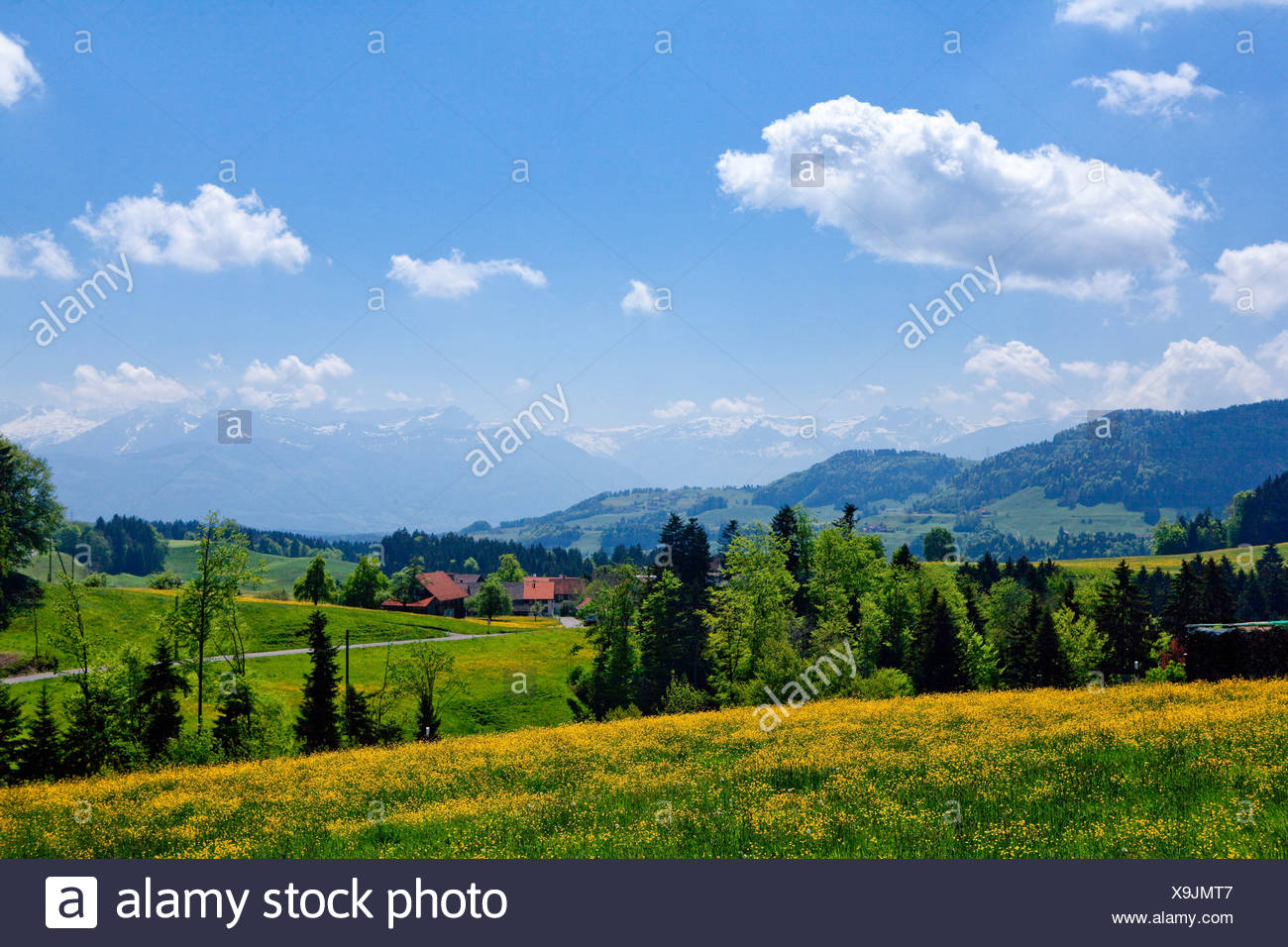Switzerland zurich landscape spring scenery stock photos for Innendekoration pfaffikon zh