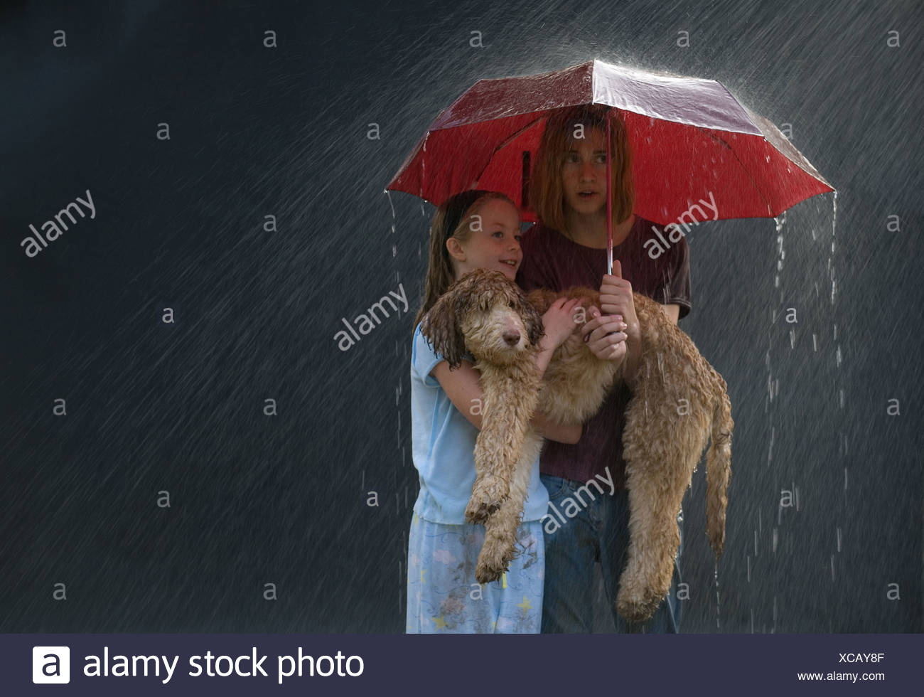 caught in a rain Find caught in the rain stock images in hd and millions of other royalty-free stock photos, illustrations, and vectors in the shutterstock collection thousands of new, high-quality pictures added every day.
