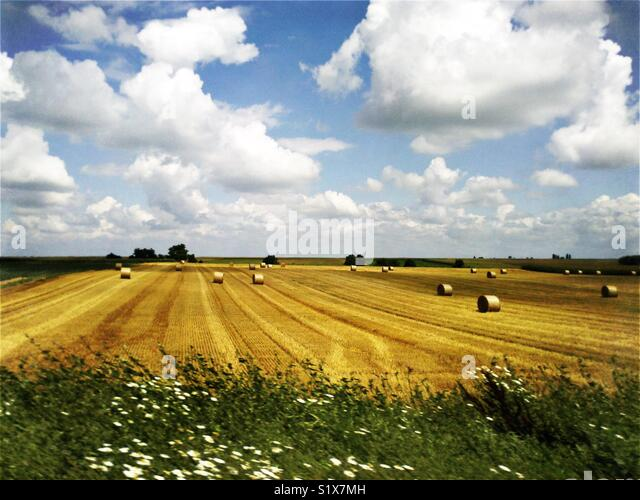 Alsace france fields stock photos alsace france fields for Blue piscine colmar