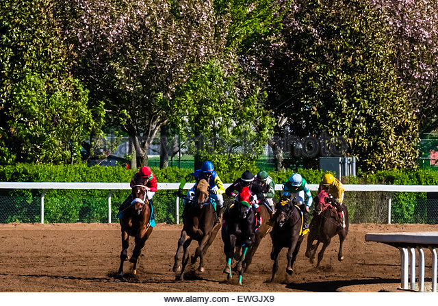 Horse racing on the dirt track  at Keeneland Racecourse, Lexington, Kentucky USA. - Stock Image