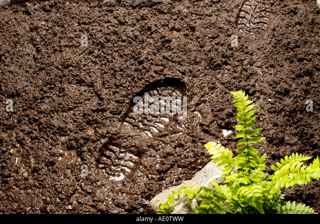 Muddy foot print - Stock Image