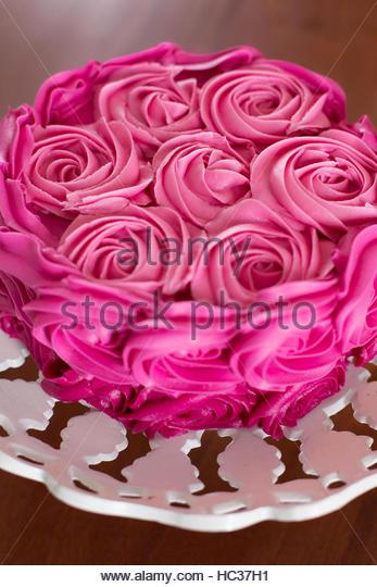 Pink roses, still life - Stock Image