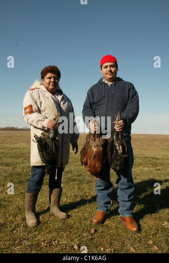 Two mexican immigrant farm workers hold chickens they killed on a small farm in Southern Indiana. - Stock-Bilder