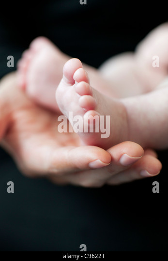 Baby's feet. Mother holding her 2 month old baby's feet. - Stock Image