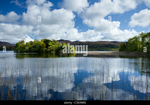 Summer reflections, Lough Gill, County Sligo, Ireland. - Stock-Bilder