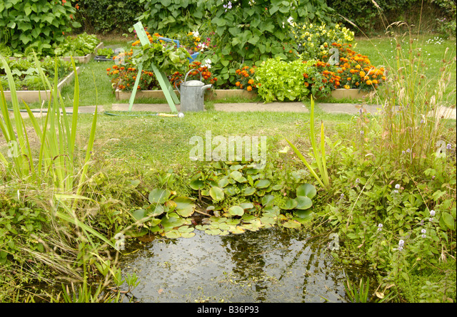Small Garden Pond Stock Photos Small Garden Pond Stock