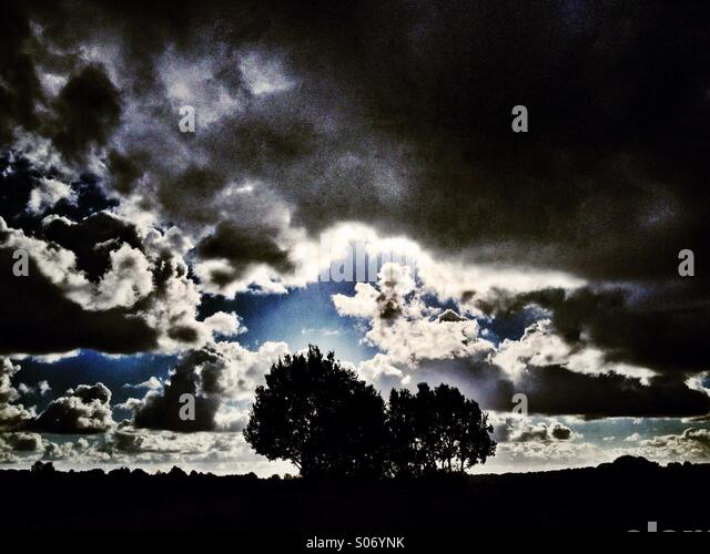 Trees silhouetted against dramatic sky - Stock Image