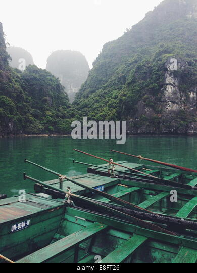 Close up of green rowboats moored in beautiful bay - Stock-Bilder