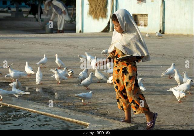 al wakra muslim Al wakrah, qatar road map & street view - view streets, roads, routes, places, buildings.