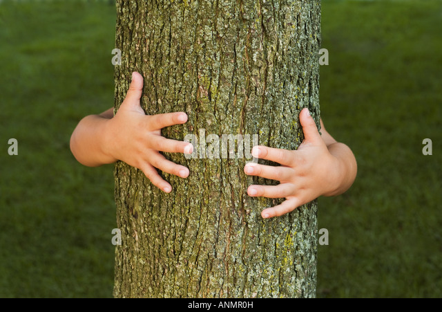 Person hugging tree - Stock Image