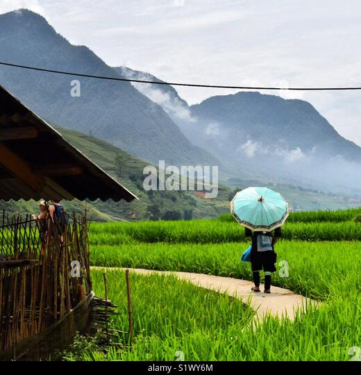 The beautiful valley of Sapa, Vietnam - Stock Image