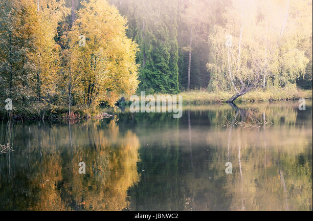 Nice morning light at autumn in little pond Finland - Stock Image