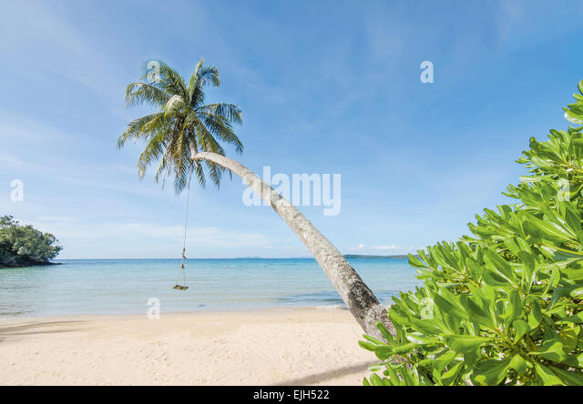 Summer, Travel, Vacation and Holiday concept - Swing hang from coconut palm tree over beach sea in Phuket ,Thailand. - Stock-Bilder