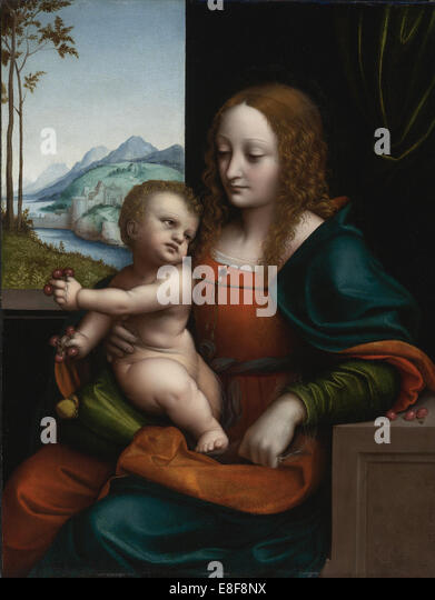 Madonna of the Cherries. Artist: Giampietrino (1 Half of 16th cen.) - Stock Image