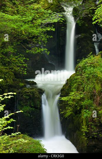 Waterfall on Hoar Oak River near Watersmeet, Exmoor, Devon, England. Spring (May) 2012. - Stock Image