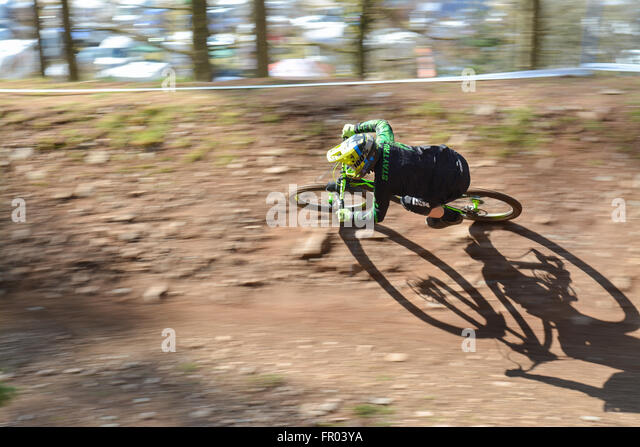 Ae Forest, Dumfries, Scotland - 20 March 2016: UK weather -  a rider completes his first run in the  SDA (Scottish - Stock-Bilder