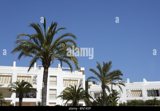 mediterranean white houses architecture palm trees blue sky - Stock Image