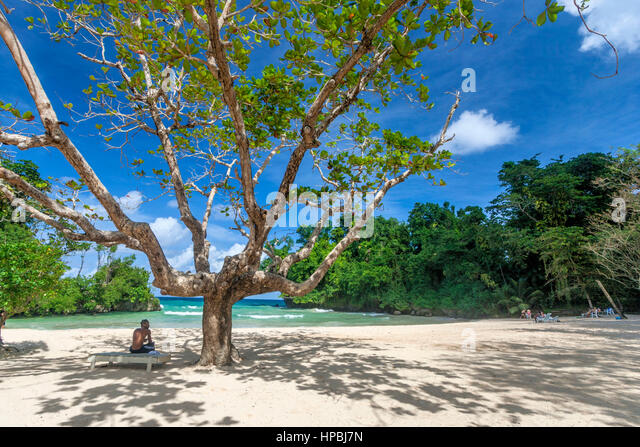 Jamaica Port Antonio Frenchmens Cove beautiful beach in a tropical garden with a mineral river - Stock Image