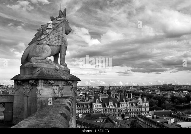 View of Paris from church tower - Stock Image