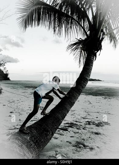 Boy playing with nature - Stock Image