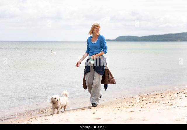 Dog Stops Walking During Walk