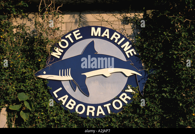 Sarasota Florida, Mote Marine sign - Stock Image