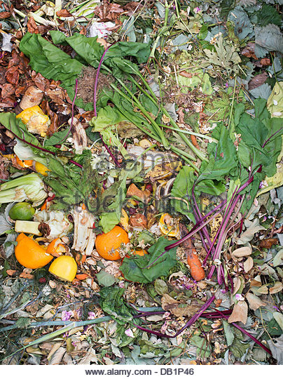 Fruit, flower and plant waste. Garden waste on the compost heap - Stock Image