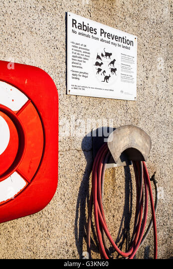 Life Belt, Rabies Warning Sign, Early Morning, Pittenweem, Fife, Scotland - Stock Image