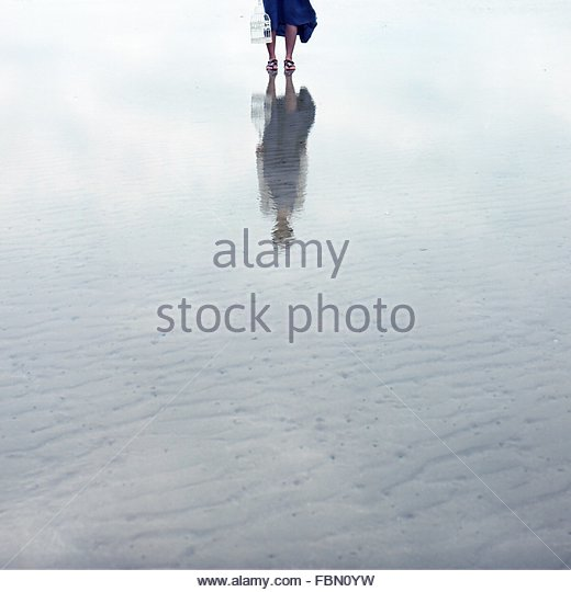 Low Section Of Woman With Birdcage Walking On Beach - Stock Image