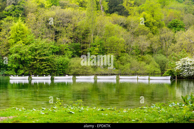 Small rowing boats in a line on a boating lake. - Stock Image