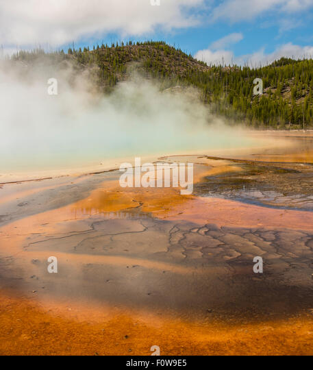Scenic of Grand Prismatic Spring. Colorful patterns, steam, and mountains. Yellowstone National Park, Wyoming, USA - Stock Image