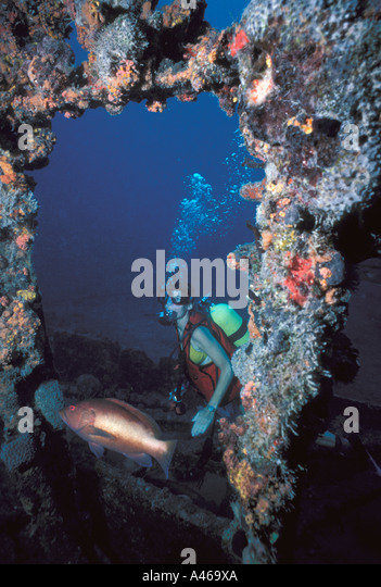 British Virgin Islands Rhone wreck scuba diver - Stock Image